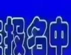 【傻大姐家政】加盟/加盟费用/项目详情