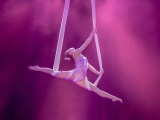 空中舞蹈,钢管舞培训基地