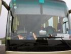 南京大巴出租、旅游班车、新车出租、各种车型