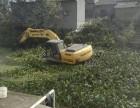 自贡市富顺县周边湿地挖机出租水陆挖掘机出租江南产品服务