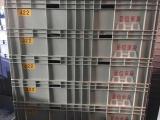廊坊地区质量好的塑料箱 |通化塑料箱