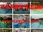 张家界亲子活动亲子趣味运动会水上趣味运动会趣味拓展