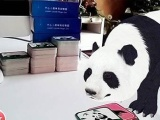 湖南AR增强现实/VR虚拟现实推荐公司