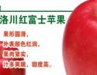 每天一苹果疾病远离我