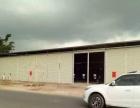 玉林城北超大厂房1万平方