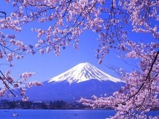 日本本州浪漫樱缘六日 福州到日本看樱花 看日