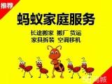 蚂蚁虽小 服务全城