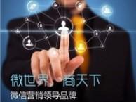 BBS区块链贝安币技术系统定制开发