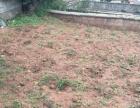 宁蒗县大兴镇彩虹路400平方米旧庭院房出售
