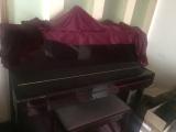 钢琴品牌 金士博格