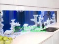 隔断鱼缸,生态鱼缸,鱼缸,家庭鱼缸,办公室鱼缸