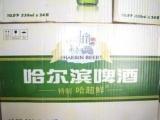 哈尔滨啤酒 夜场啤酒 酒吧KTV专用酒水
