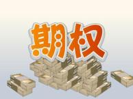 上海个股场外期权怎么做,能买什么标的?