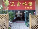 上海嘉定各种高档鱼缸定制,终身质保,终身免费清洗维护