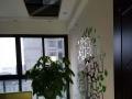 出租唐人街写字楼,转为办公的豪华装修。