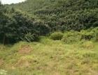 勐腊县一中进去两公里环城 厂房 6003平米