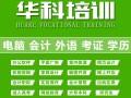 零基础学电脑办公Office软件排版表格PPT幻灯招商加盟