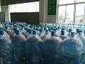 桶装矿泉水欢迎订购