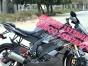 带挡没离合器的省油摩托还有一台8成新踏板500