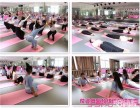 福建针对女子开设舞蹈七大瑜伽流派零基础培训【葆姿】