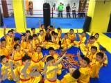 上海武術培訓館 武術的種類以及學習武術的好處