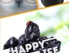 黑龙江野生蓝莓浓缩汁 饮料 果干 红树莓浓缩汁饮料