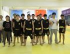 济南金龙散打搏击俱乐部MMA泰拳培训