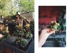 传奇福文化传播公司打造森系田园风婚礼性价比较高创意无限