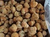 产地直销大量猴头菇干货,鲜品及猴头菇周边产