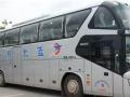 巴旅租车 高端车、旅游车、商务车、特价租车