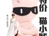 猫小贱公仔失恋33天单身抱枕娃娃毛绒玩具批发网店代销一件代发
