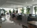 金鼎 SOHO国际 写字楼 300余平米,