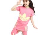 童装 女童 套装 2014新款夏装 中大童韩版运动2件套  可挑