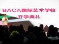 BAC国际艺术学校丨A-level艺术高中课程