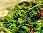 小兴安岭林区自采摘野生山野菜纯绿色无污染