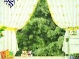 影楼背景|摄影PP纸|写真背景|儿童背景A430