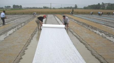 医用无纺布,潍坊哪里有提供报价合理的无纺布