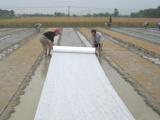 亲水无纺布生产厂家 专业厂家供应各类无纺布