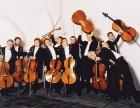 大提琴培训班