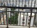香洲新村公交 诚丰名园1室1厅南北 翠华南苑 1房1厅1阳台