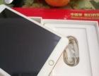 ipad mini3国行64G wifi版