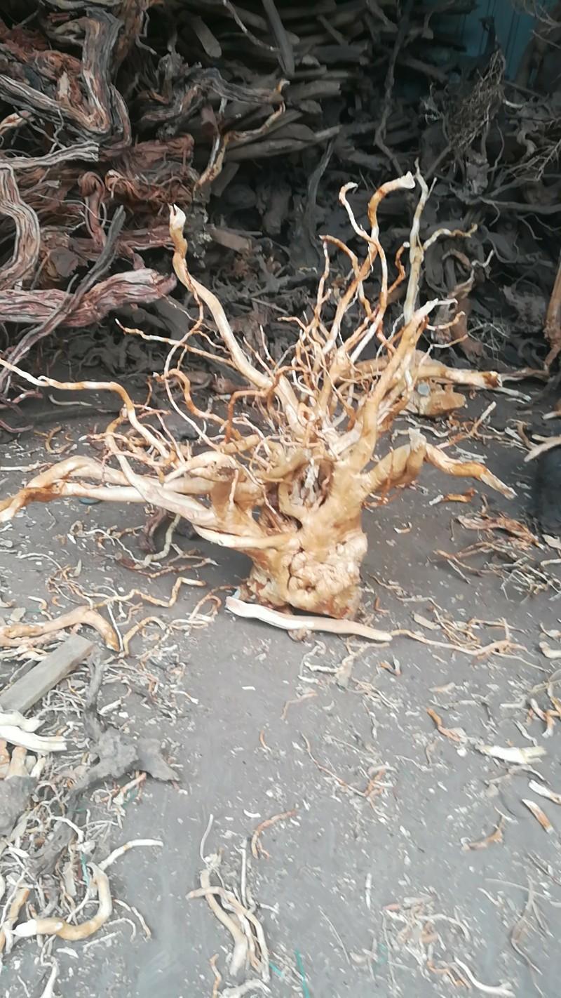原产地精品沉木精品沉木精品沉木批发
