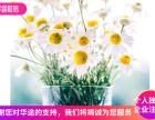上海奉贤区奉城注册公司要多少钱