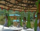 国际丹婷瑜伽教练培训机构,零基础学起200课时