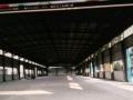 出租西峡9000平米仓库20000元/月