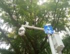 即墨区监控安装 网络布线 无线报警 停车场车牌自动识别系统