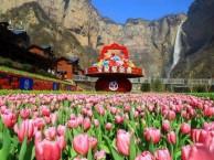 踏青赏花推荐 郑州到新乡宝泉跟团一日游游团购价格