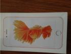 转个苹果6S手机 全新的,还没开封、64G