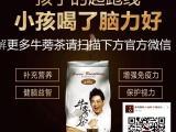 广东牛蒡茶价格,江苏牛蒡茶价格,绿色呼吸牛蒡茶