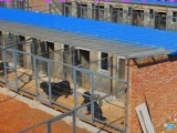 有保障的养殖项目招加盟商肉狗苗多少钱一只,肉狗养殖成本和利润